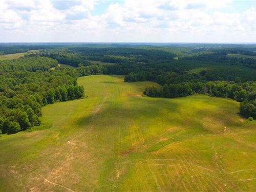 Beautiful 613 Acre Cattle, Row Cro : Indian Mound : Stewart County : Tennessee