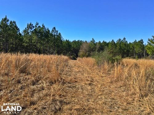 Gateswood South Homesite And Mini : Robertsdale : Baldwin County : Alabama
