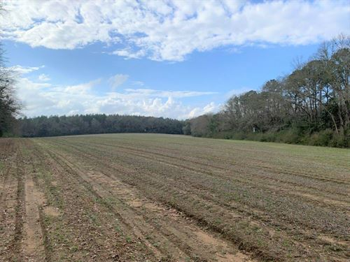 Farm, Home, Creeks Near Opp : Opp : Covington County : Alabama