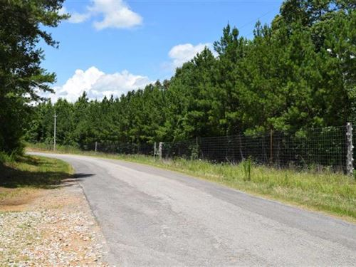 Hunt And Play on 280 Acres Near RI : Ripley : Tippah County : Mississippi