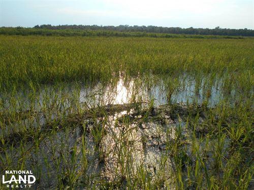 Turn Key Duck And Buck Property : Wayside : Washington County : Mississippi