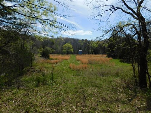 Country Home With Acreage For Sale : Clifton : Wayne County : Tennessee