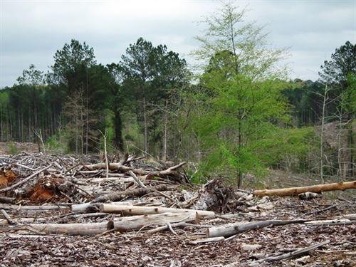 Jane Guyton 72.59 : Kosciusko : Attala County : Mississippi