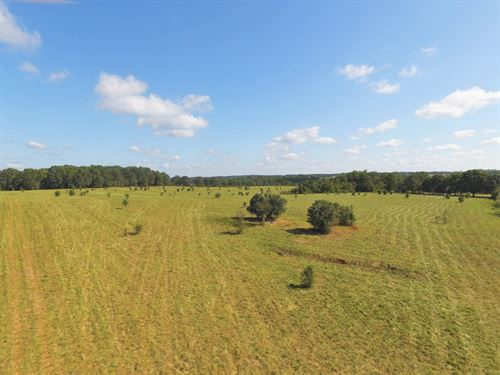 45 Acre Farm Northern Cherokee Co : Gaffney : Cherokee County : South Carolina