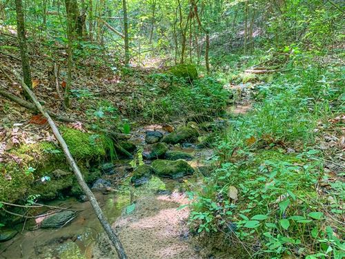 118 Acres in Coosa County, Alabama : Kellyton : Coosa County : Alabama