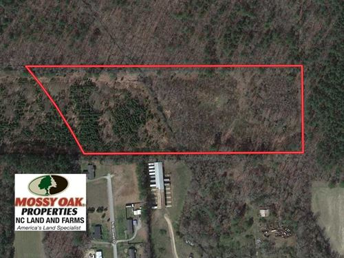 13 Acres of Hunting Land For Sale : Whitakers : Edgecombe County : North Carolina