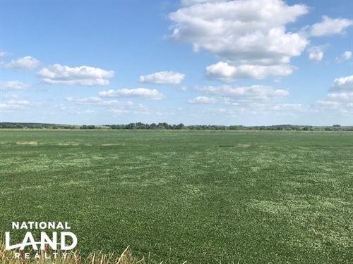 Riverton Bottom Farm 934 : Riverton : Fremont County : Iowa