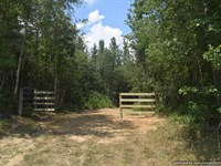 Hunting Property : Morton : Smith County : Mississippi