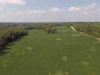 44 Acres In Big Sandy, Tn : Big Sandy : Benton County : Tennessee