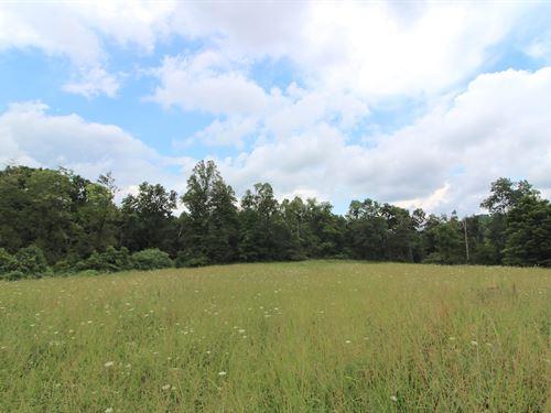 Twp Hwy 249, 38 Acres : Lower Salem : Allen County : Ohio