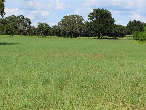 Florida Ranches for Sale : 20 - 50 Acres : RANCHFLIP