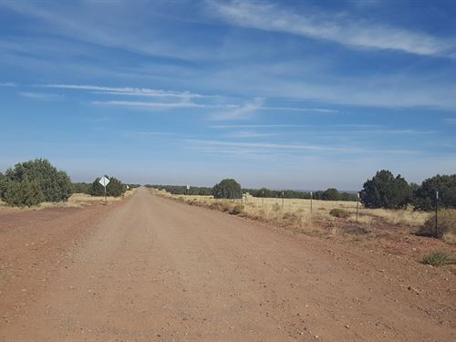 Beautiful Acreage,Trees, $334/Mo : Snowflake Area : Apache County : Arizona