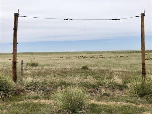 Thayer 350 : Agate : Elbert County : Colorado