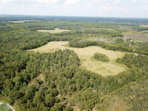360 Acres Holmes County FL : Bonifay : Holmes County : Florida