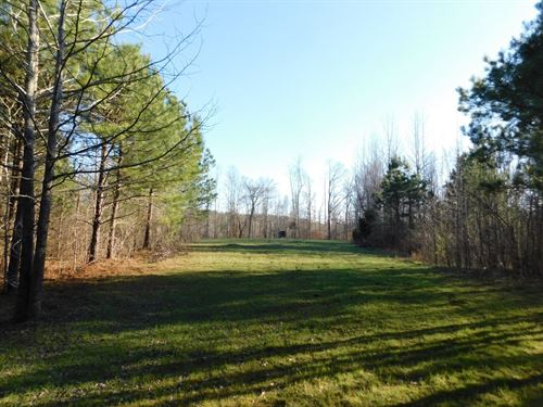 Tennessee Land For Sale : Adamsville : McNairy County : Tennessee