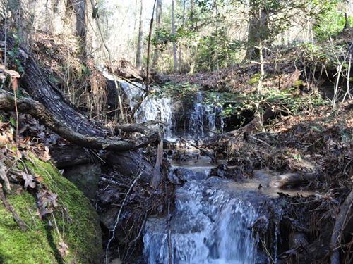 Rock Outcroppings & Waterfalls : Hamilton : Marion County : Alabama