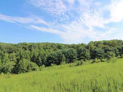 Rider Rd, 56 Acres : Roseville : Muskingum County : Ohio