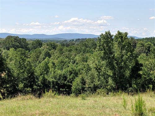 Pasture, Views, Hardwoods, & Creek : Lineville : Clay County : Alabama