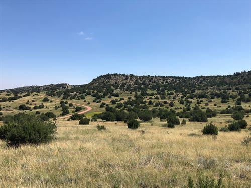 Pope Valley Ranch 24 : Pueblo : Colorado