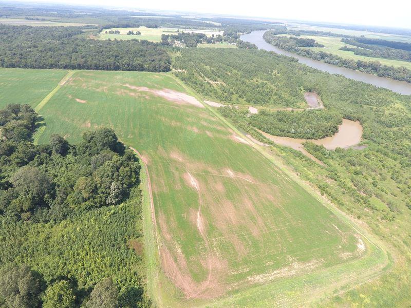 Ducks, Deer & Turkey On White River : Grand Glaise : Jackson County : Arkansas