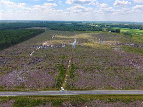 150 Acres of Cut Timber Land For : Farmville : Greene County : North Carolina