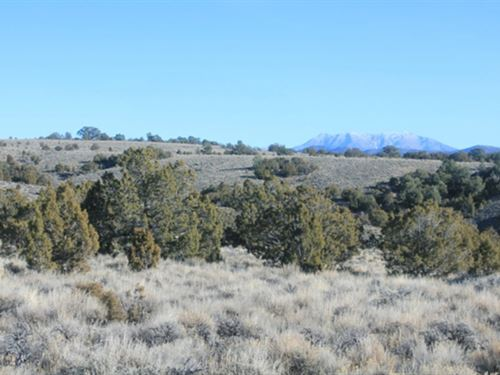 Ranch Land/Creek Murdock Mountain : Montello : Elko County : Nevada