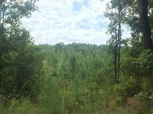 180.75 Acres in Wesson, MS : Wesson : Copiah County : Mississippi