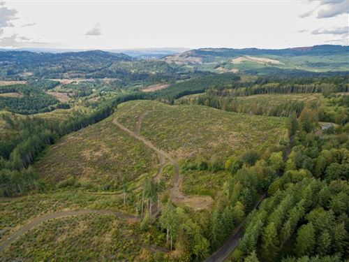 201.30 Acres in Kelso, WA : Kelso : Cowlitz County : Washington