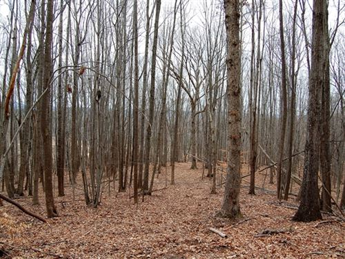 654.57 Acres in Amherst, VA : Amherst : Nelson County : Virginia