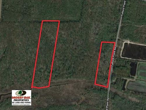 22 Acres of Creek Front Hunting LA : Lowland : Pamlico County : North Carolina