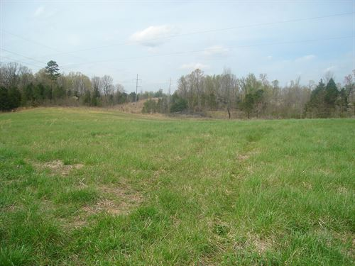 27Ac-Great Building, Hunting Cattle : Bethel Springs : McNairy County : Tennessee