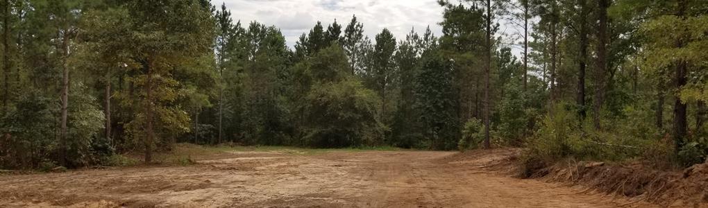 Deer Hunters Dream Tract : Shiloh : Harris County : Georgia