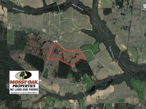 74 Acres of Cut Timberland For Sal : Farmville : Greene County : North Carolina