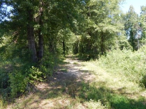 285 Acres In Kemper County In Scoob : Scooba : Kemper County : Mississippi