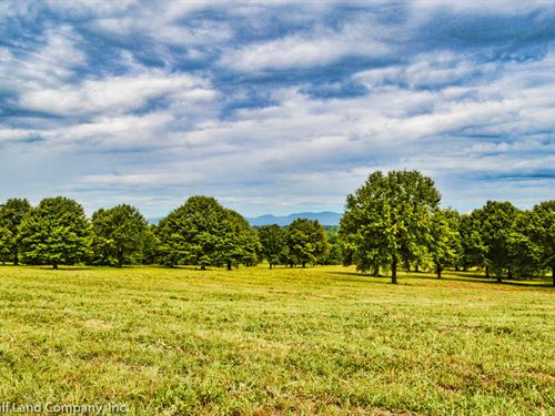 27 Ac With Panoramic Mountain Views : Inman : Spartanburg County : South Carolina