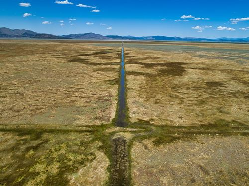 20.1 Acre Hemp Farm Canal : Madeline Plains : Lassen County : California