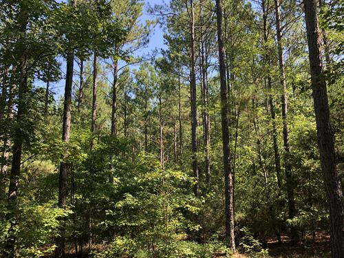 Starr Timber & Recreational Land : Starr : Anderson County : South Carolina