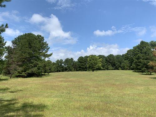 Overton Tract : Greensboro : Greene County : Georgia
