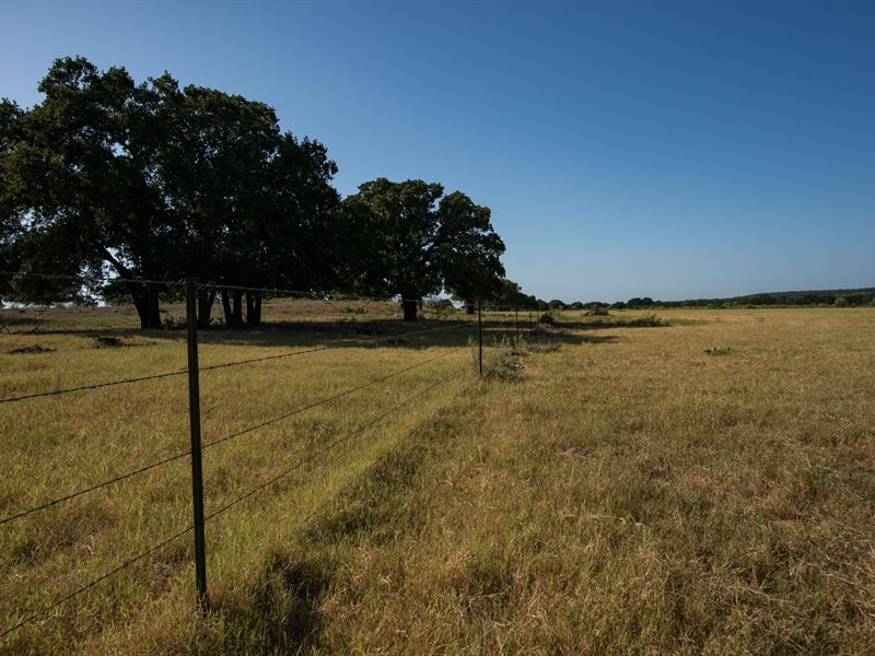 Prime Pasture Land For Sale : Gorman : Eastland County : Texas