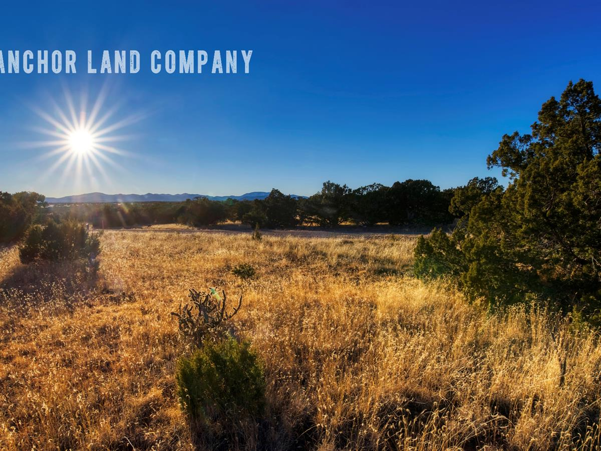 Beautiful 40 Acre Ranch Lot 20 : Ranch for Sale by Owner : Corona :  Torrance County : New Mexico