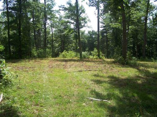 43.37 Acres Located Patrick County : Meadows Of Dan : Patrick County : Virginia