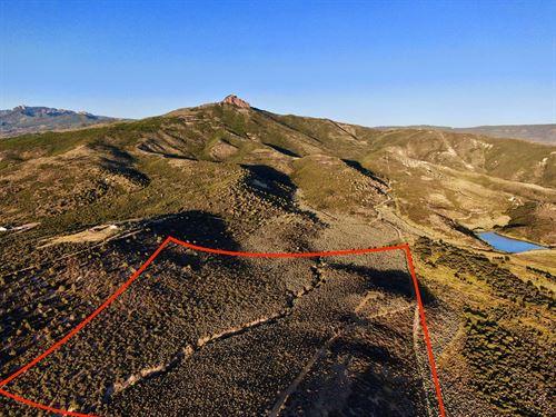 Colorado Mountain Land 40 Acres : Crawford : Montrose County : Colorado