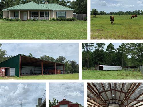 Old Starke Road Ranch : Palatka : Putnam County : Florida