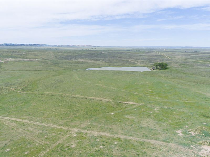 Big Wyoming Ranch : Newcastle : Weston County : Wyoming