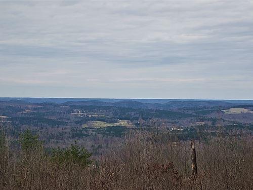 Etowah Co, Taylor Mountain Tract : Collinsville : Etowah County : Alabama