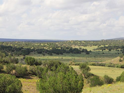 38 Acres Bordering State Land : Saint Johns : Apache County : Arizona