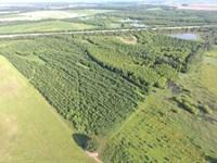 40 Acres Of Duck & Deer Hunting : Bradford : Jackson County : Arkansas