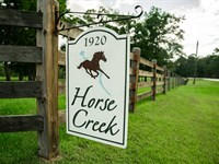 Horse Creek : Ochlocknee : Thomas County : Georgia