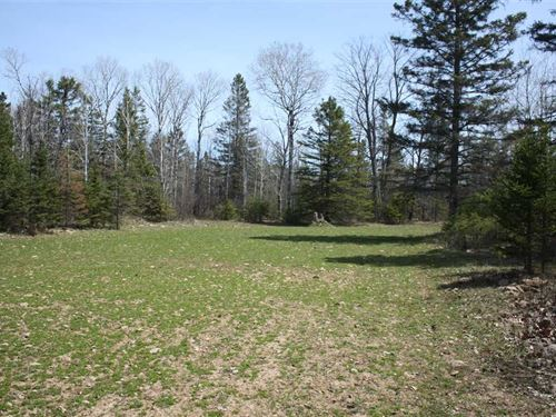Beautiful 320 Acre Wooded Property : Posen : Presque Isle County : Michigan