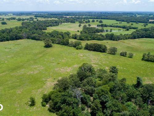 65 Acres Grand Saline : Grand Saline : Van Zandt County : Texas